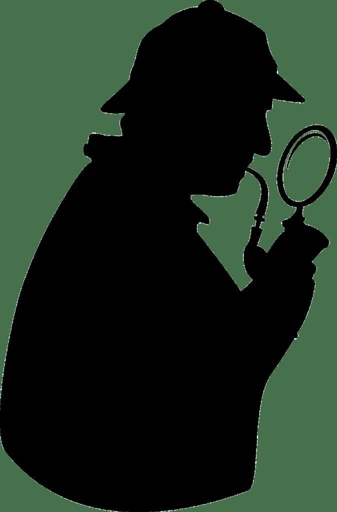 חוקר מקצועי